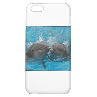Besar delfínes