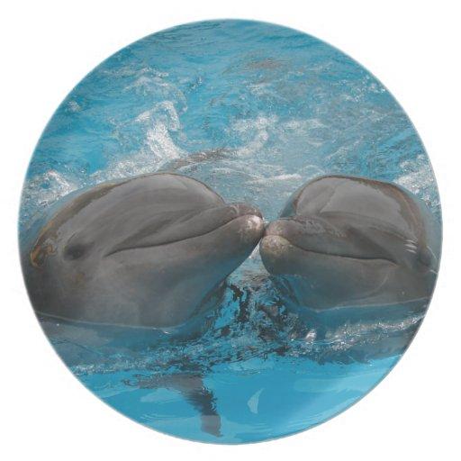 Besar delfínes plato de cena