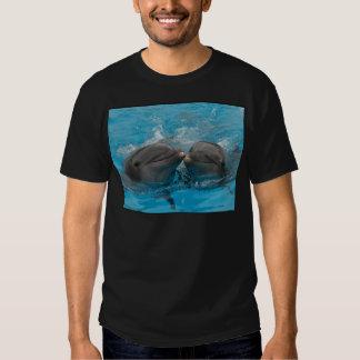 Besar delfínes playeras