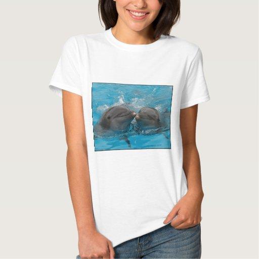 Besar delfínes polera