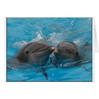 Besar delfínes tarjeta de felicitación