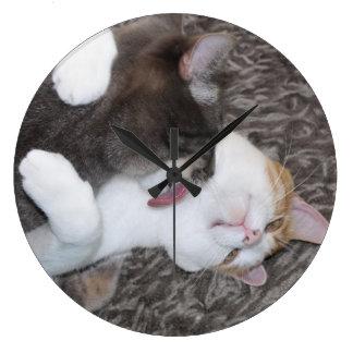 Besar el reloj de los gatos