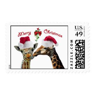 Besar jirafas del navidad debajo del muérdago timbre postal