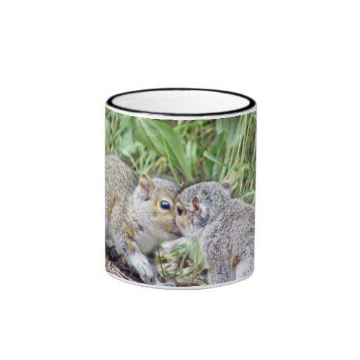 Besar la taza de las ardillas