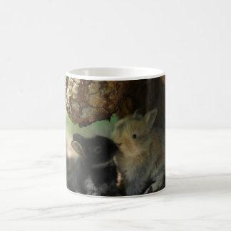 Besar la taza de los conejitos