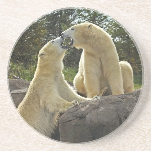 Besar osos polares posavaso para bebida