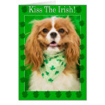 ¡Bese a los irlandeses! Tarjeta arrogante del perr
