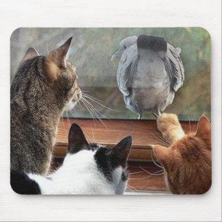Bese mi pájaro plumoso del extremo con Kittys Mous Tapete De Ratones