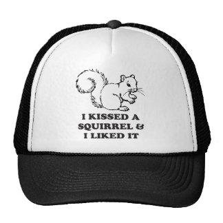 Besé una ardilla gorra
