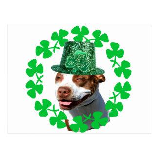 """Béseme pitbull del irlandés de m de I """" Postal"""