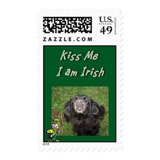 Béseme que soy sello irlandés