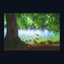 Beside the Still Water Canvas Print