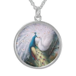 Beso de los pavos reales del vintage collar de plata esterlina
