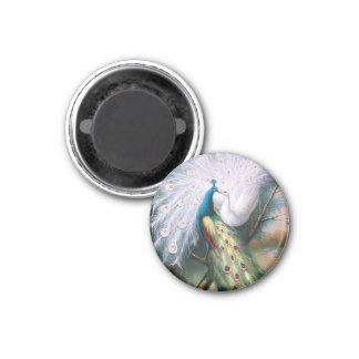 Beso de los pavos reales del vintage imán redondo 3 cm