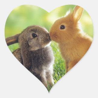Beso del conejito pegatina en forma de corazón