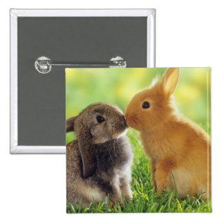 Beso del conejito pin cuadrado