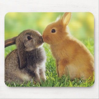 Beso del conejito alfombrilla de ratones