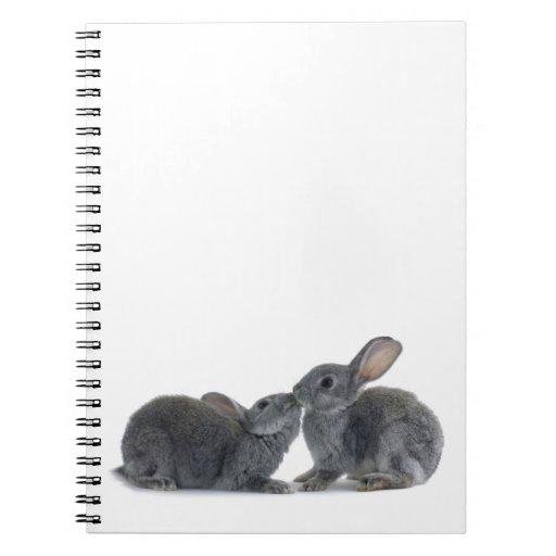 Beso del conejo libretas