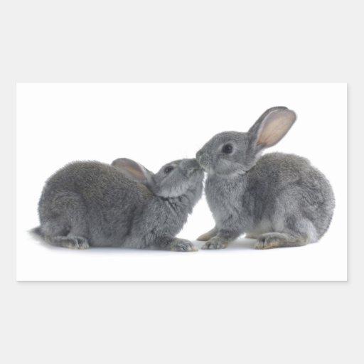 Beso del conejo pegatina rectangular
