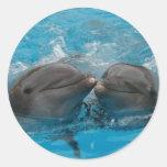 Beso del delfín pegatinas redondas