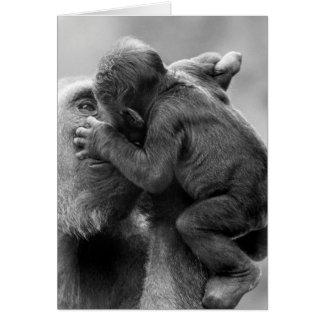 Beso del gorila tarjeta de felicitación