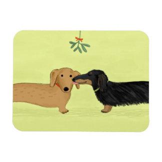 Beso del muérdago del Dachshund - navidad del perr Imán