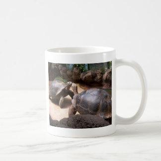 Beso gigante de la tortuga taza