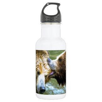 Beso grande del oso grizzly