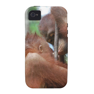 Besos de la fauna del orangután vibe iPhone 4 carcasa