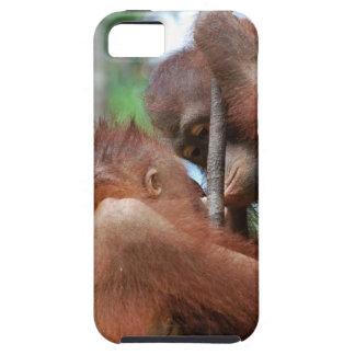 Besos de la fauna del orangután iPhone 5 Case-Mate cárcasa