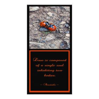 Besos de la mariquita tarjetas fotográficas personalizadas