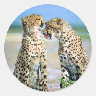 Besos del guepardo pegatina redonda