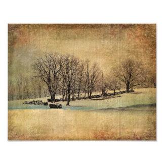 Besos del Impresión-Invierno de la foto Fotografías