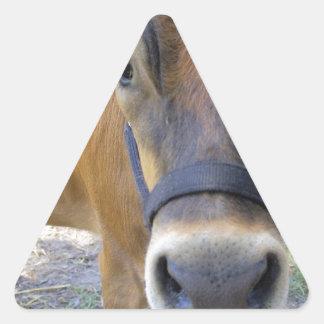 Bessie Triangle Sticker