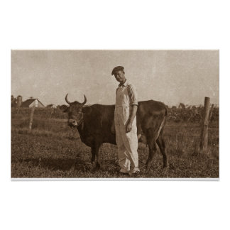 Bessie the Cow Poster