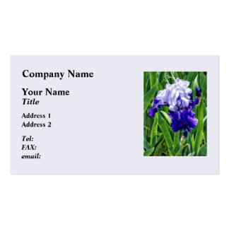 Best Bet Iris Business Card