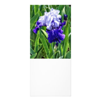 Best Bet Iris Rack Card
