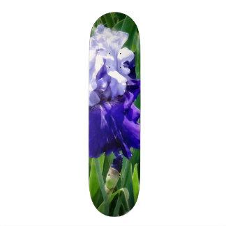 Best Bet Iris Skateboards