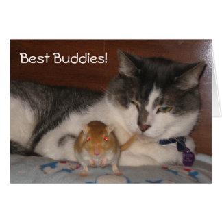 Best Buddies Friendship Card