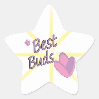 Best Buds Star Sticker