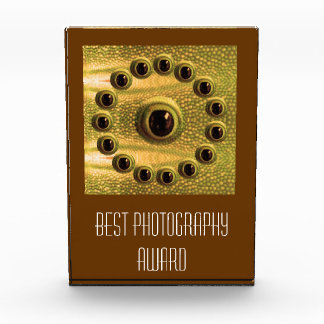 Best Camera -  Photography Award