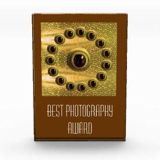 Best Camera -  Photography Award