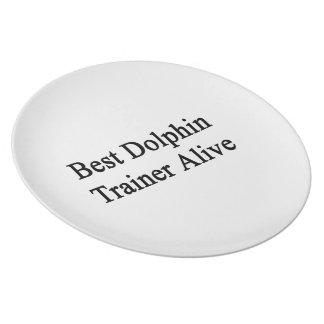 Best Dolphin Trainer Alive Dinner Plates