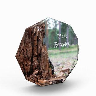 Best Forester Award