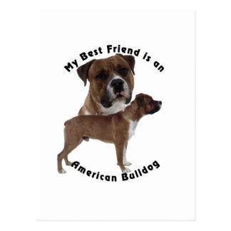 Best Friend American Bulldog Postcard
