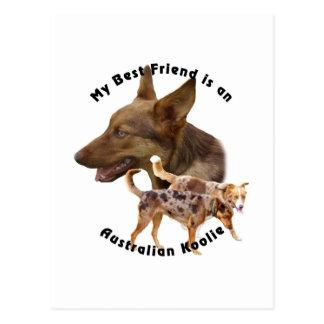 Best Friend Australian Koolie red Postcard