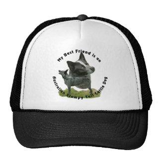 Best Friend Australian Stumpy Tail Hats
