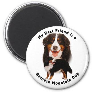 Best Friend Bernese Mountain Dog Magnet