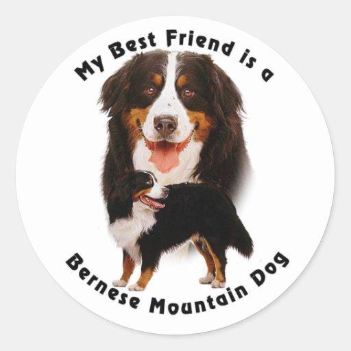 Best Friend Bernese Mountain Dog Stickers