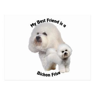 Best Friend Bichon Frise Postcard